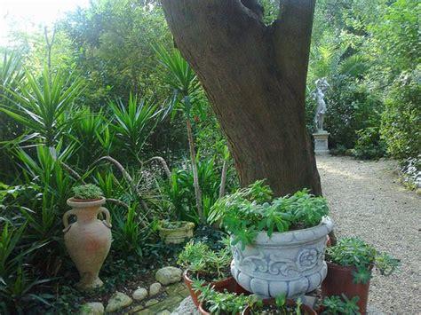 Aiuole Con Cicas by Un Scorcio Con Anfore E Statue Foto Di Parco Giardino