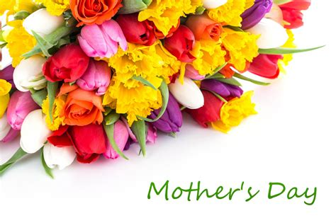 flowers for s day top 4 ideal mother s day flowers for cheering your