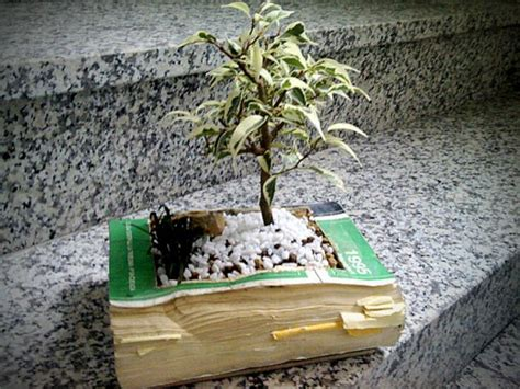 How To Make A Book Planter by Creative Planters Made Of Recycled Books