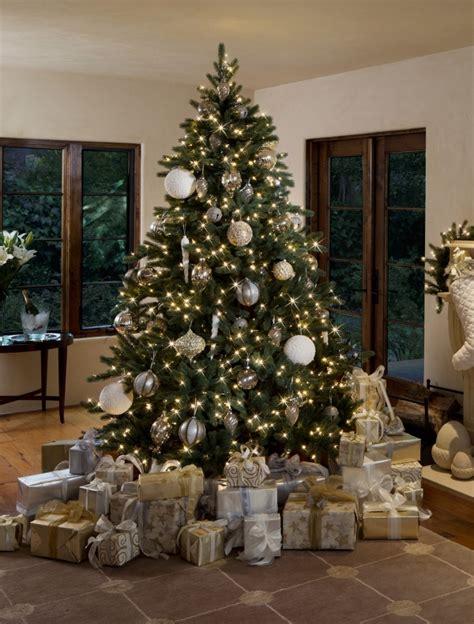 weihnachtsbaum gold weihnachtsbaum ausw 228 hlen tipps f 252 r frisches tannengr 252 n