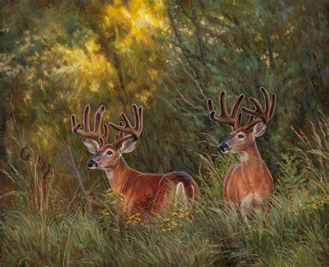 paint nite deer kirby white tailed deer original paintings