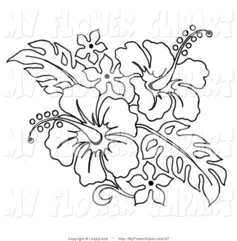 coloring pages of hawaiian flowers use the form below to delete this black and white hawaiian