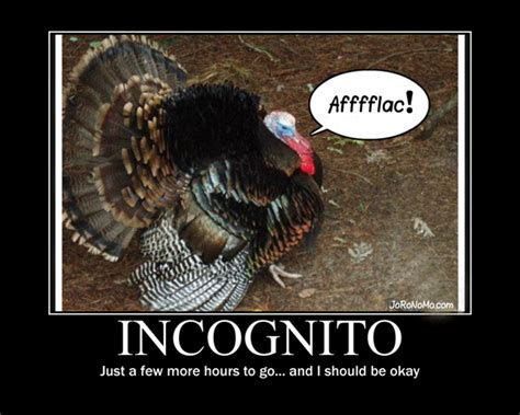 Funny Turkey Memes - funny thanksgiving quotes and cartoons quotesgram