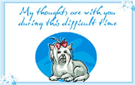 pet sympathy card template my thoughts are with you during this difficult time pet