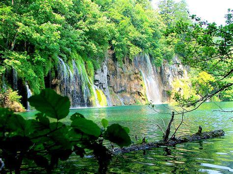 imagenes de hábitats naturales recursos naturales
