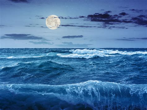 ocean scow the moon s gravity does not fully explain how ocean tides