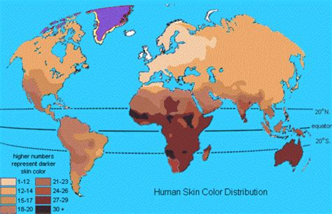 skin color map biology the term someone is not black enough