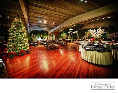 Best Flowerfield St. James Christmas Wedding Decorations