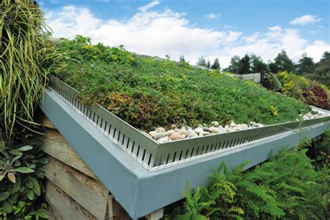eco roofs green roofing systems surrey garden roof systems surrey