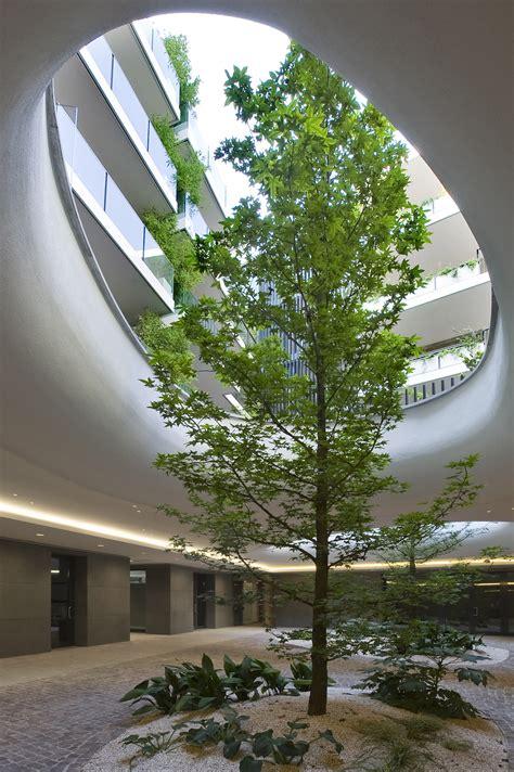 alberi da interni edificio in viale monte grappa a