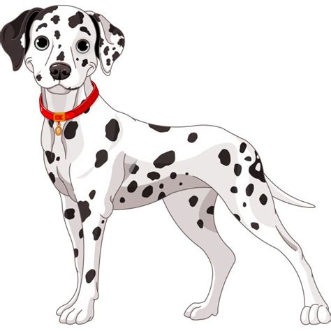 spotted dogs 736 best images about printables cats and dogs on coloring coloring for
