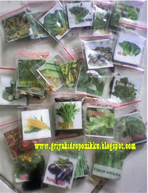 Benih Terong Aura griya hidroponikku aneka benih sayuran daun harga 3ribu