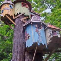 Coolest Treehouse In The World the coolest treehouses in the world