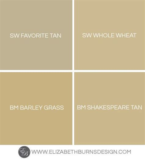 wheat color shades of gold gold paint colors barley grass and