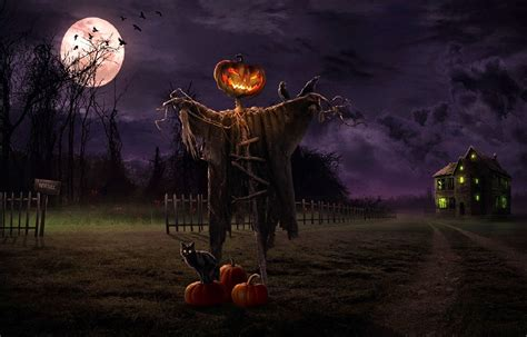halloween night themes halloween scary horror nights scarecrow pumpkin haunted