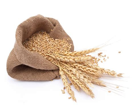 whole grain unprocessed bread 8 anti aging foods you should be