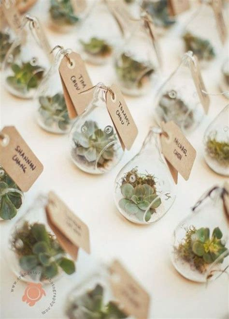 Wedding Gift Plant by 25 Best Ideas About Plant Wedding Favors On
