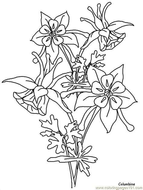 printable coloring pages of realistic flowers coloring pages realistic flowers cartoons gt realistic