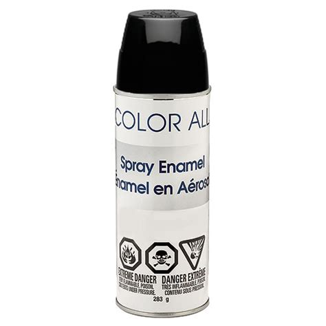 spray painter visa spray paint rona