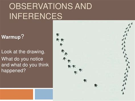 Observations Vs Inferences Worksheet by Observations And Inferences