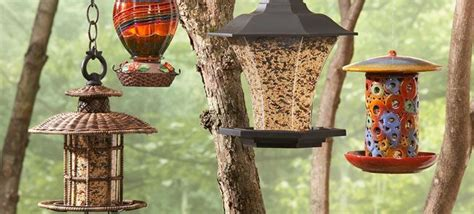how to attract birds to your backyard 1000 images about bird houses on gardens