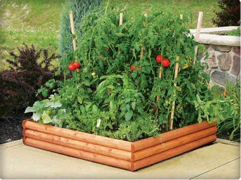 vegetable beds raised garden beds ideas vegetable 187 home decorations insight