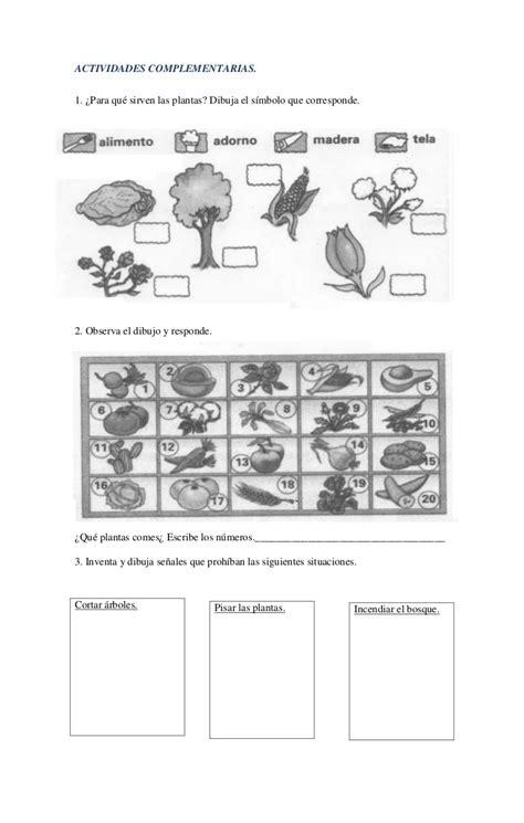 actividades de ciencias para primer grado guias de ciencias naturales grado primero