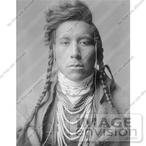 free mative american braids for hair photos stock photography crow native american man bird on high