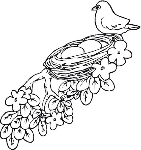 coloring page nest tree with nest coloring page coloring pages