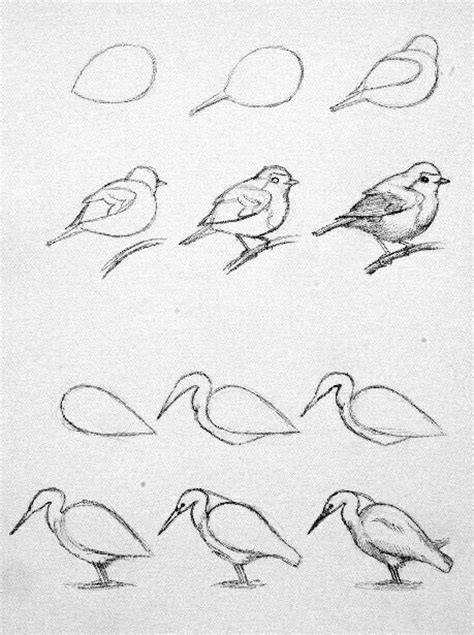 Best 25 Bird Drawings Ideas On Bird Sketch
