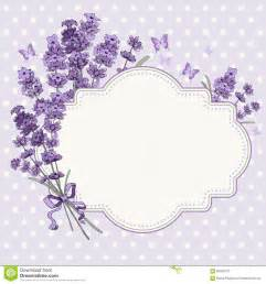 lavender card stock vector image 56560776