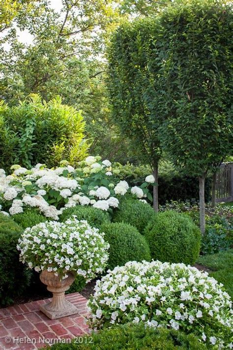 341 best beautiful white gardens images on