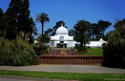 conservatory of conservatory of flowers sundays in my city unknown