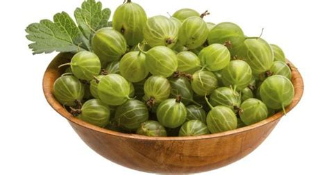 Amla Gooseberry For Hair by Hair Fall With Amla Or Indian Gooseberry Read