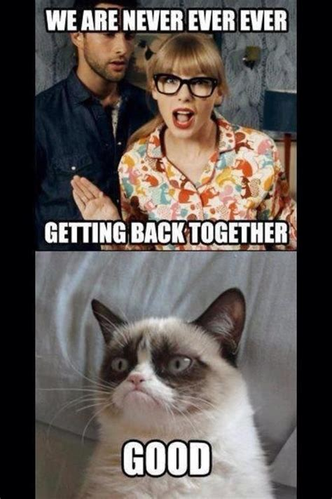 Angry Cat Good Meme - angry cat tumblr funny pinterest i love funny p