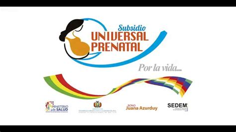 por la vida de 073949791x subsidio universal prenatal quot por la vida quot youtube
