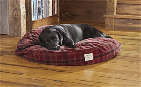 No Chew Bed by Toughchew Bed Toughchew 174 Bed Orvis