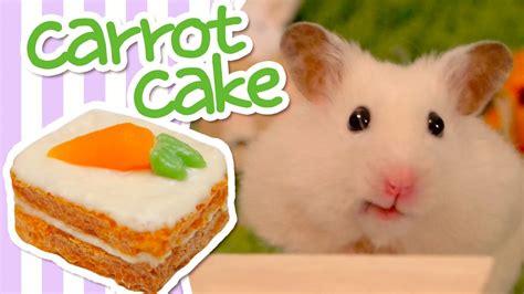Hamster Kitchen carrot cake hamster kitchen doovi