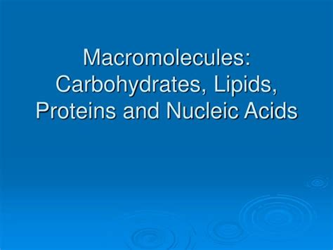carbohydrates lipids proteins and nucleic acids are ppt macromolecules carbohydrates lipids proteins and
