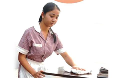 house maids cleaning image gallery house maid