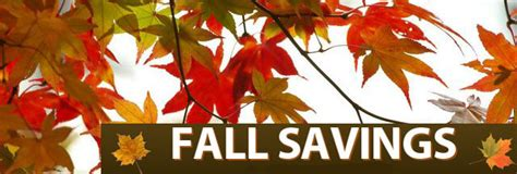 Fall Bargains fall specials on media drives nas san and rdx