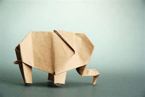 Where Did Origami Originate - where did origami originate gallery craft decoration ideas
