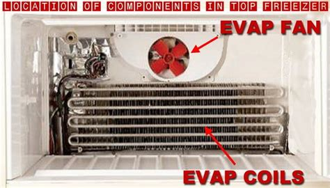 whirlpool refrigerator evaporator fan not working fridge is warm freezer is cold how to fix