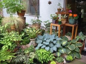 with trowel the joys of patio gardening kitsilano ca