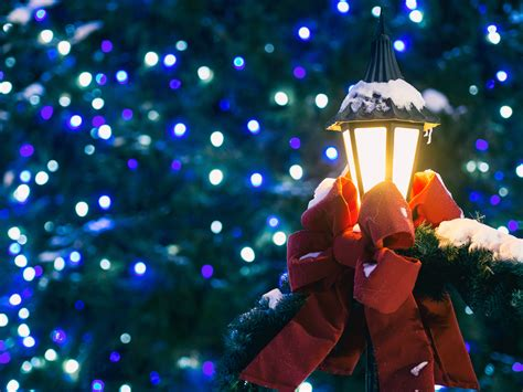 domain christmas tree lighting 2018 free images light color tree decoration