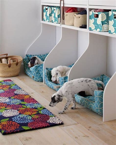 Dogs Bedroom Ideas Home Design Garden Architecture Blog Magazine