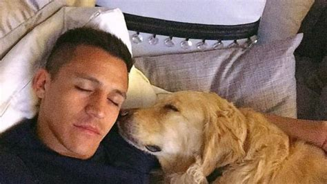 alexis sanchez y sus perros video el enigm 225 tico homenaje de alexis a sus perros