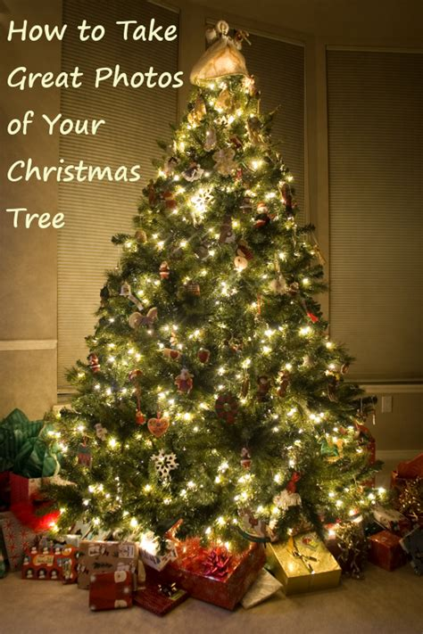 how to take great pictures of your christmas tree