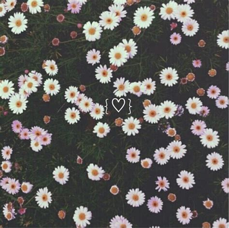 flower pattern we heart it background cool cute daisy emoji floral flower