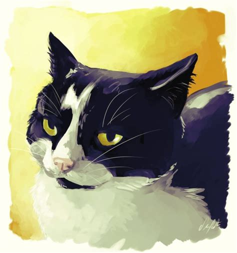 698 best black and white cats art images on pinterest